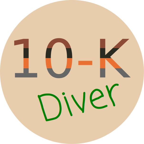 10-K Diver Logo